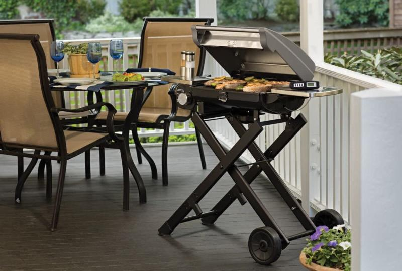 Cuisinart 240 Gas Grill Stainless Steel Compact Outdoor