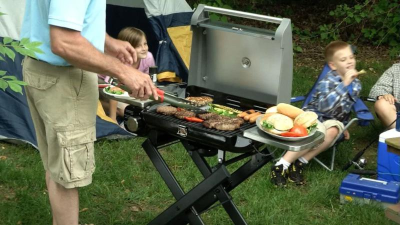 Cuisinart Cgg 240 Portable Gas Grill Stainless Compact