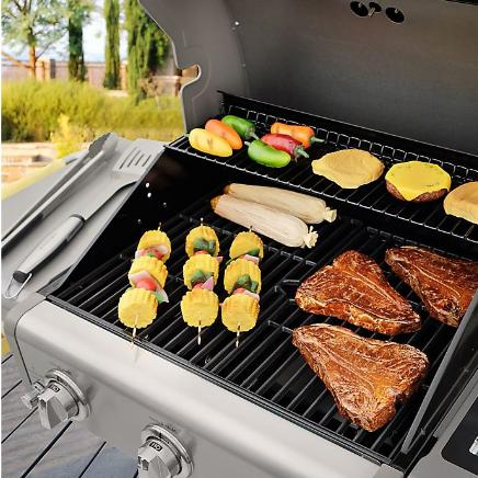 Kenmore Gas Grill in Stainless Steel/Brown